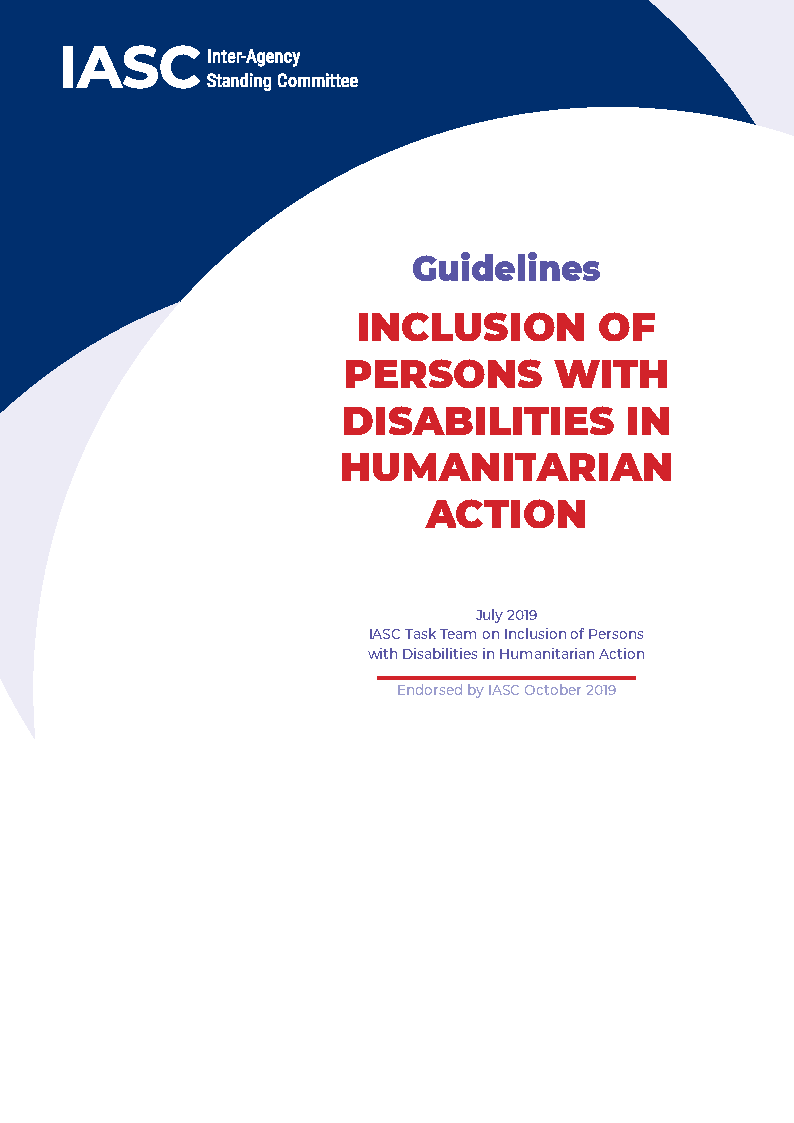 The cover page of the IASC guidelines, with blue sweeping motifs and the title in red.