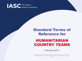A screenshot of the cover page of the standard terms of reference for humanitarian country teams.