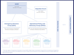 A screenshot of the IASC Organisation Chart. The details are illegible.
