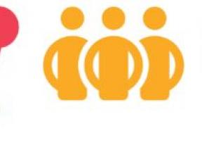 Photo of the five icons for the IASC Strategic Priorities