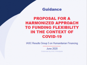IASC Proposal for a Harmonized Approach to Funding Flexibility in the Context of COVID-19 cover