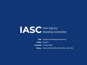 IASC 2021 new years video ending, showing credits for authors and for the IASC