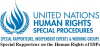 Office of the Special Rapporteur on the Human Rights of Internally Displaced Persons Logo