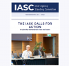 A screenshot of the top of the newsletter, with photo of Mark Lowcock sat at the head of a table and the title 'The IASC Calls for Action'
